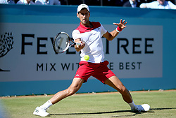 Novak Djokovic during day five of the Fever-Tree Championship at the Queen's Club, London.