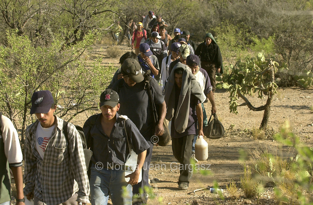 42 undocumented migrants who crossed from Mexico on to the Tohono O'odham Nation in Arizona head north east of Little Tucson in the deadliest stretch of the border in temperatures exceeding 110 degrees.