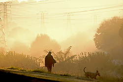JOHANNESBURG, SOUTH AFRICA - MAY 10: A dog walker out exercising in Randburg during lockdown level 4 on May 10, 2020 in Johannesburg, South Africa. According to media reports, during lockdown level 4 people are allowed to exercise. Guidelines allow for cycling, running and walking as examples and must be within a 5km radius of their residences between 6:00 am – 9:00 am. (Photo by Dino Lloyd)