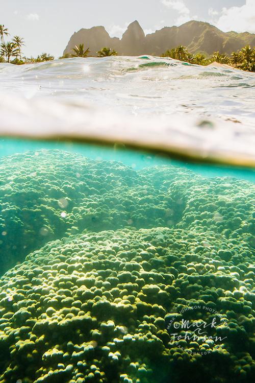 Split level view of a coral reef and the Kalalea Mountains, Kauai, Hawaii