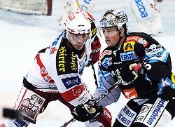 19.11.2010, Keine Sorgen Eisarena, Linz, AUT, EBEL, EHC Liwest Linz vs EC KAC, im Bild Rob Shearer (Liwest Black Wings,#19) und Dieter Kalt (EC KAC,#74), EXPA Pictures © 2010, PhotoCredit: EXPA/R.Eisenbauer