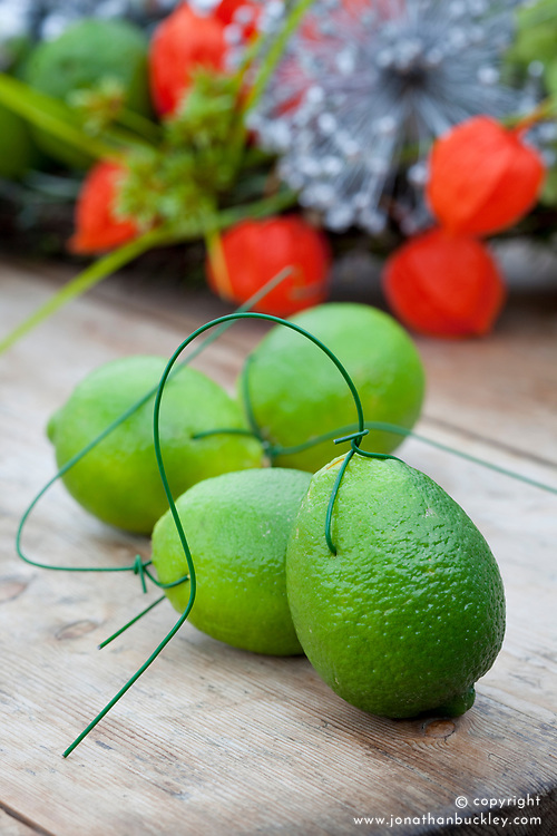 Wired limes