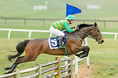 Fair Hill Point to Point 2018