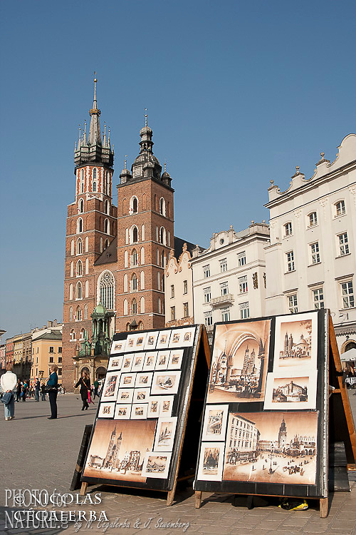 La Basilique Notre Dame sur le rynek de Cracovie