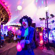 Illume light festival coromandel 2016