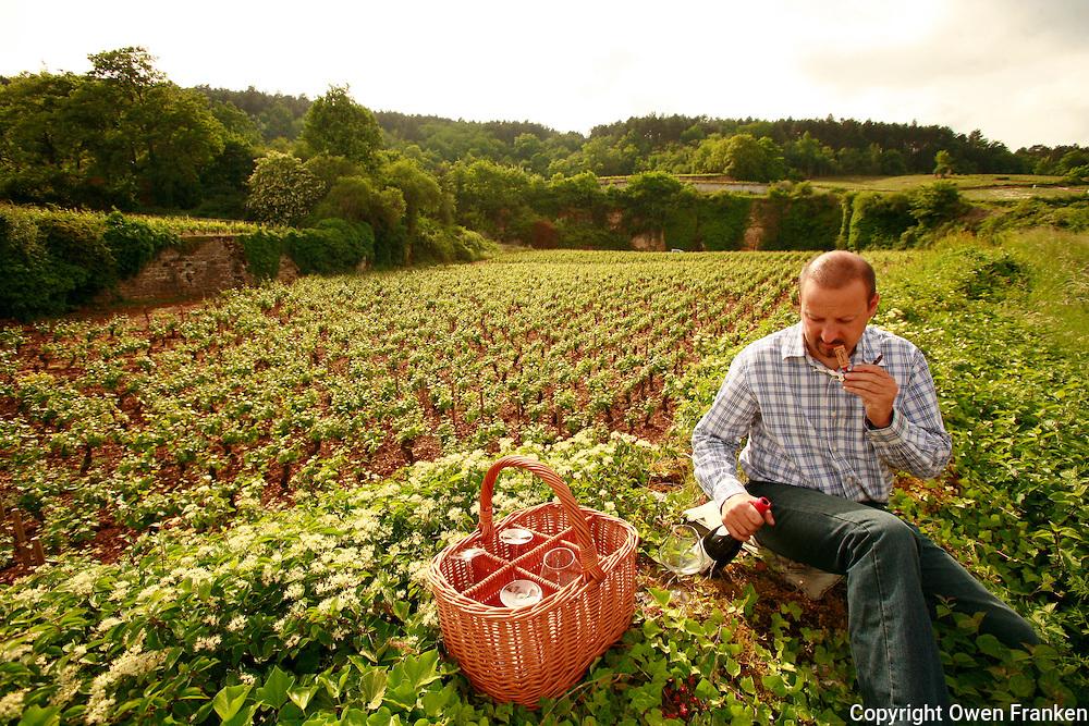 Winemaker Jean-Marie Fourrier in Gevrey-Chambertin, Burgundy