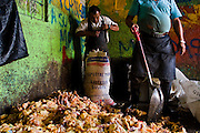 Rotting chicken parts are bagged and disposed of by workers in Merced market, Mexico City.