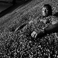 Jimbo Grisson, Peanut Farmer