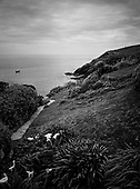 Fishing Cove, Cornwall 2008