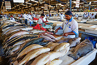 Emirats Arabes Unis, Dubai, quartier de Deira, fish market // United Arab Emirates, Dubai, Deira neighbourhood, fish market