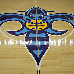 26 September 2008:  The Fleur De Bee at center court at the New Orleans Arena in New Orleans, LA.