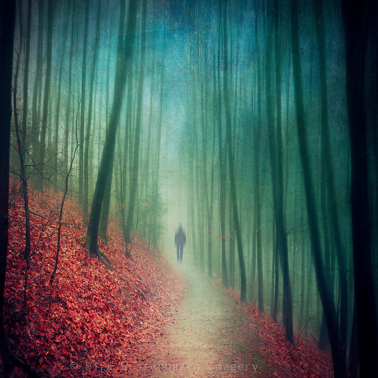 Abstraction of a person in a desolate forest - manipulated photograph