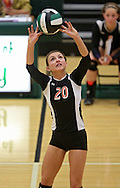 Springville's Sidney Hopkins (20) sets the ball in the Class 1A regional final match at Iowa City West High School in Iowa City on Wednesday, November 6, 2013. Springville defeated New London 3-2.