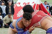 Mongolian wrestlers, Nadaam, Mongolia