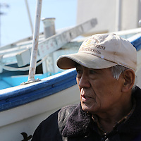 February,28.2016 Onhama,main port of Fukushima prefecture  a  former sailor and fisherman native from Kanagawa,explain that  he can fish only sample of fish  but not allow to sell and distribute. He distribute for free to his family members and friends  fish under radioctavity standarts  after checking  them one time per a week.  according to safety agencys,Tuna  and bonito are strictly forbidden to fishing and eating, The  fisherman say also that there  is no Future for Fukushima people . Pierre  Boutier