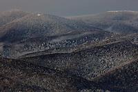 Carpathian beech forest, view from Polonina Wetlinska, Bieszczady National Park, Poland