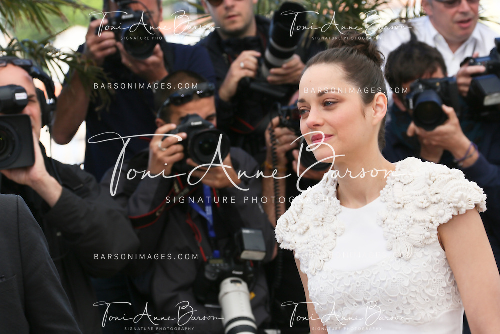CANNES, FRANCE - MAY 24:  Marion Cotillard attends the photocall for 'The Immigrant' at The 66th Annual Cannes Film Festival on May 24, 2013 in Cannes, France.  (Photo by Tony Barson/FilmMagic)