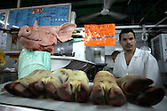 Meat stand at the Quinta Crespo market in Caracas (Venezuela) Feb. 3, 2009 (Photo/Ivan Gonzalez)