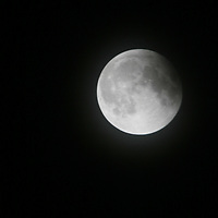 Full Shepherd Moon Over Papa Francis