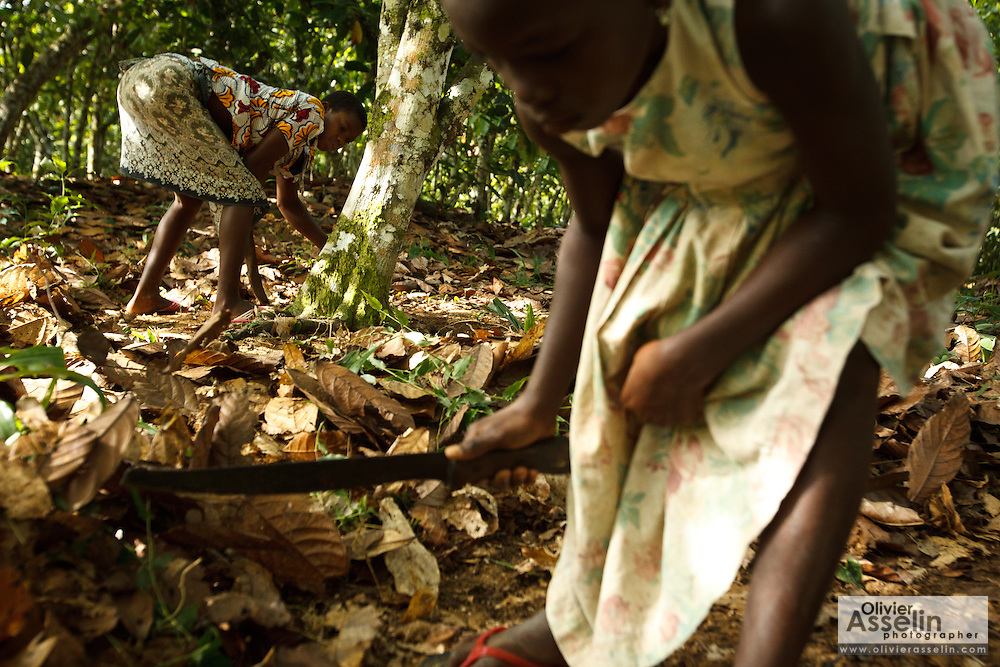 Koffi Affoue Ange, 10, (R) and Drissa Amoin Rose, 11, (L) use machetes to clear dry leaves under cocoa trees on their family's cocoa plantation near the village of Soumaorodougou, Bas-Sassandra region, Cote d'Ivoire on Saturday March 3, 2012. They go to school but help with farming chores on weekends.