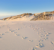 Footprints, Ripples and Steps in the Sand at Fire Island, New York