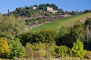Castelvecchi with Chianti vineyard in foreground on Via Aldo Moro, Chianti, Tuscany, Italy