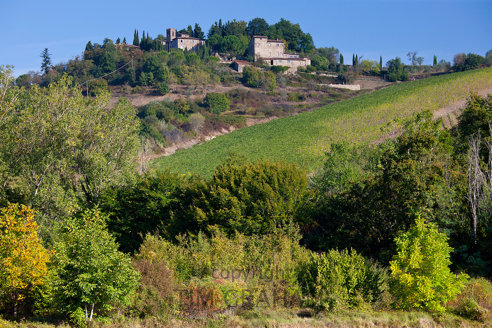 Castelvecchi with Chianti vineyard in foreground on Via Aldo Moro, Chianti, Tuscany, Italy