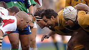 2005 Rugby, Investec Challenge, England vs Australia, Wallabies front row, left, Alaiter Baxter, Brendon Cannon and Matt Dunning. RFU Twickenham, ENGLAND:     12.11.2005   © Peter Spurrier/Intersport Images - email images@intersport-images..