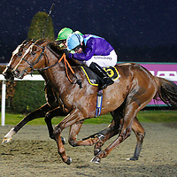 Royal Prize and Jim Crowley winning the 8.00 race