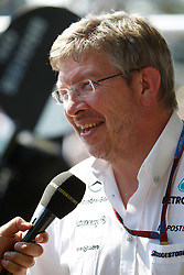 Motorsports / Formula 1: World Championship 2010, GP of Brazil, Ross Brawn (ENG, Mercedes GP Petronas),