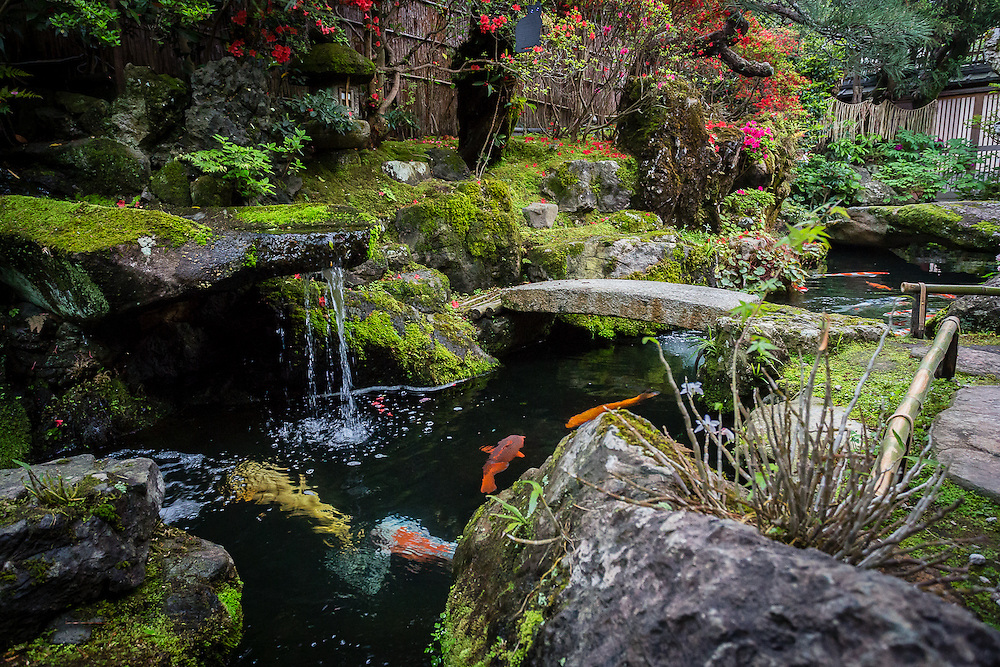 rakusho is one of the oldest traditional tea and sweet shops of kyoto it has - Japanese Koi Garden
