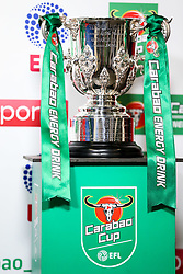 The Football League Cup sits in the Ashton gate tunnel ahead of the match  - Rogan/JMP - 20/12/2017 - Ashton Gate Stadium - Bristol, England - Bristol City v Manchester United - Carabao Cup Quarter Final.