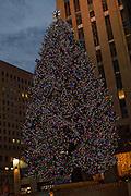 The Rockefeller Center Christmas Tree with 30 Rockefeller Center in the background.