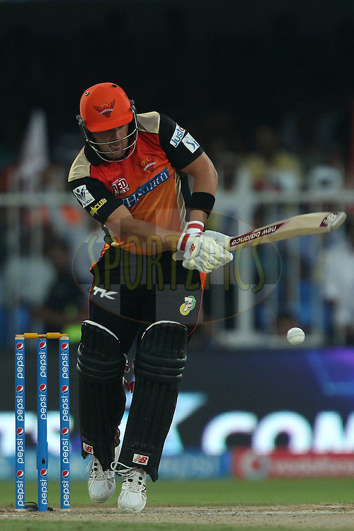 Aaron Finch of the Sunrisers Hyderabad during match 17 of the Pepsi Indian Premier League 2014 between the Sunrisers Hyderabad and the Chennai Superkings held at the Sharjah Cricket Stadium, Sharjah, United Arab Emirates on the 27th April 2014<br /> <br /> Photo by Ron Gaunt / IPL / SPORTZPICS
