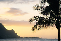 United States, Hawaii, Kauai, palm tree, Hanalei Bay and Bali Hai mountain at sunset