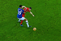 LIVERPOOL, ENGLAND - Monday, December 19, 2016: Liverpool's James Milner in action against Everton's Dominic Calvert-Lewin during the FA Premier League match, the 227th Merseyside Derby, at Goodison Park. (Pic by Gavin Trafford/Propaganda)