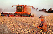 Copyright Jim Rice © 2013.<br /> Wheat harvest.<br /> Australia