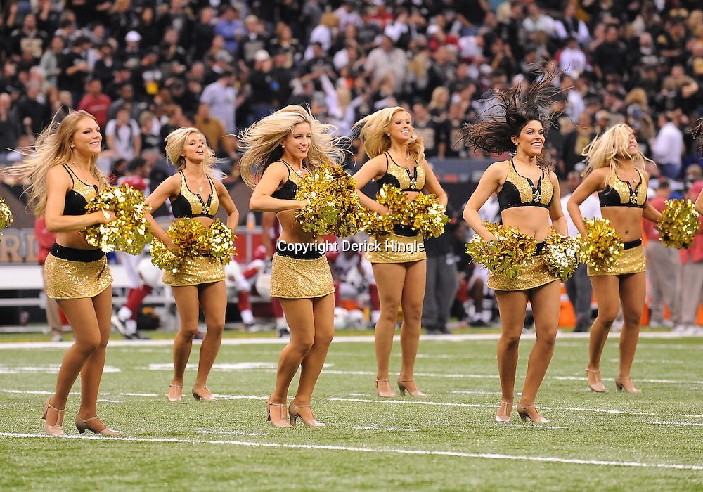 16 January 2010:  during a 45-14 win by the New Orleans Saints over the Arizona Cardinals in the 2010 NFC Divisional Playoff game at the Louisiana Superdome in New Orleans, Louisiana.