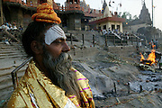 Ascetic Hindu Priest--called a Sadhu, cloaks himself in a funeral shroud used to adorn bodies before they are cremated (left behind by mourners) at the main burning ghat in Varanasi.
