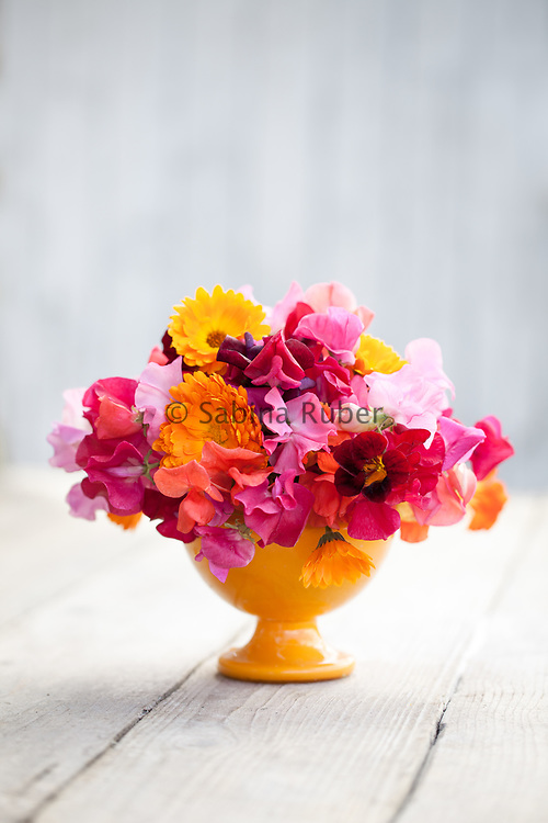 Bright flower arrangement with pink and red sweet peas, Calendula officinalis and nasturtium 'Black Velvet' in orange vase