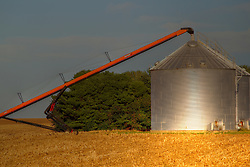 2018 corn and soybean harvest in Central Illinois.  Crops are delivered to and stored in various types of grain bins, silos and grain elevators made of steel, concrete and sport different kinds of scaffolding, augers and tubing to move and deliver the grain. Some images in this series have been digitally altered.  <br />