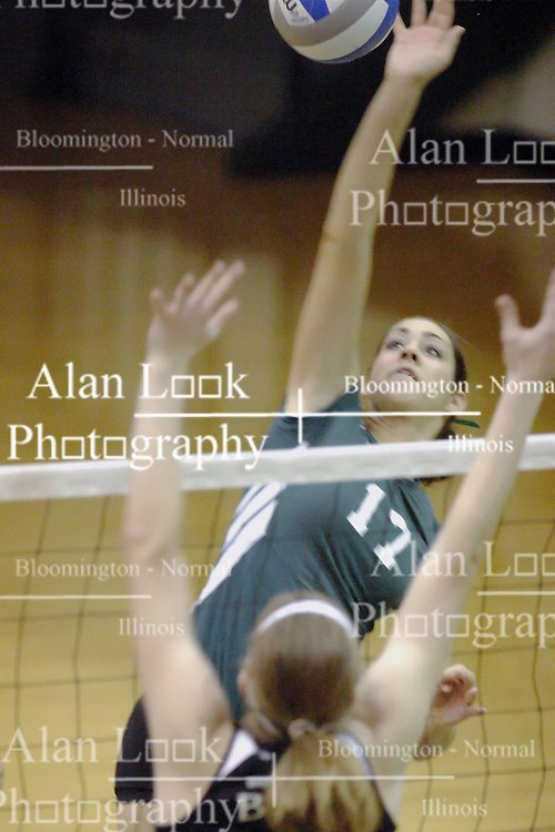 27 October 2006: Michele Malinowski reaches high for a hit as Emilie Walk rises for a block. The Bears won the match 3 games to 1. The match between the Washington University Bears and the Illinois Wesleyan Titans took place at Shirk Center on the IWU campus in Bloomington Illinois.<br />