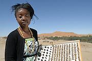 Ms. Veronica Siteketa, Research technician, veronicas@gobabeb.org, 00264-64-694-199 | Expertin für Käfer. - In den Dünen der Namib leben etwa zweihundert verschiedene Schwarzkäfer-Arten, die auch Objekt der Forschungsarbeiten der Gobabeb Station sind. Viele Vertreter dieser Käfergruppe sind von Laien gar nicht voneinander zu unterscheiden, aber sie beinhaltet Rekordhalter und Spezialisten: Onymacris plana ist der schnellste Käfer der Welt,  Onymacris unguicularis ist der berühmte Nebeltrinker-Käfer, die Arten der Gattung Lepidochora häufeln Sand zu nebelsammelnden Strukturen auf.