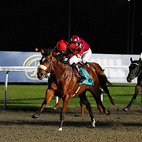 Shake The Reins and Steve Drowne winning the 5.20 race