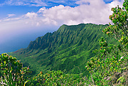 Kalalau Valley from the Pihea Trail, Koke'e State Park, Island of Kauai, Hawaii