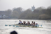 Putney, GREAT BRITAIN,  during the 2008 Varsity/Cambridge University Trial Eights, raced over the championship course. Putney to Mortlake, Tue. 16.12.2008. [Mandatory Credit, Peter Spurrier/Intersport-images..Crew Personality. Bow Dan SHAUGHNESSY, 2. Shane O'MARA, 3. John CLAY, 4. Ryan MONAGHAN, 5. Fred GILL, 6. Deaglan McEACHERN, 7. Hardy CUTBASCH, stroke,. Rob WEITEMAYER and cox Rebecca DOWBIGGIN...Crew Looks;.Bow James STRAWSON. 2. Joel JENNINGS, 3. Code STERNAL, 4 Peter MARSLAND, 5. George NASH, 6. Henry PELLY, 7. Tom RANSLEY, stroke Silas STAFFORD and Cox Helen HODGES.. Varsity Boat Race, Rowing Course: River Thames, Championship course, Putney to Mortlake 4.25 Miles,