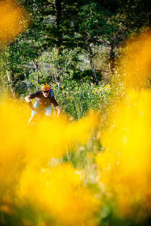 Andrew Whiteford rides summer wildflower Singletrack in the forests and meadows of the Tetons near Jackson, Wyoming.