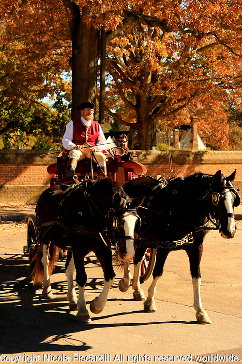 Horses pull a carriage in the historic  town of Williamsburg Virginia.