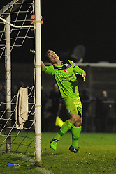 Luke Purnell of Weston Super Mare makes a save - Photo mandatory by-line: Dougie Allward/JMP - Mobile: 07966 386802 - 18/11/2014 - SPORT - Football - Weston-super-Mare - Woodspring Stadium - Weston Super Mare v Doncaster Rovers - FA Cup