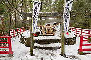 Katt-templet p&aring; Tashirojima. &Ouml;n som kallas f&ouml;r &quot;katt&ouml;n&quot; eftersom h&auml;r lever hundratals katter tillsammans med ca 50 personer.   <br /> Ishinomaki, Miyagi Prefecture, Japan. <br /> Fotograf: Christina Sj&ouml;gren<br /> Copyright 2018, All Rights Reserved